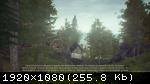Drizzlepath: Genie (2016/Лицензия) PC