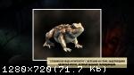 Yesterday Origins (2016) (RePack от FitGirl) PC