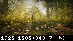 Morels: The Hunt (2019/Лицензия) PC